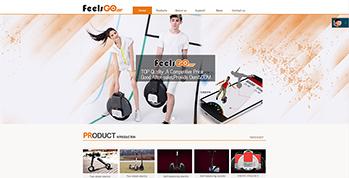 feelsgo展示型网站上线