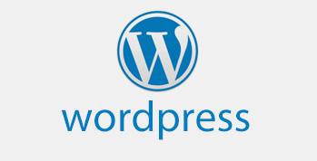 title='如何用WP做一个独立的跨境电商营销网站?'